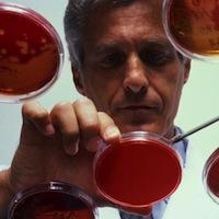 Искусственная молекула остановит размножение вируса гепатита С?